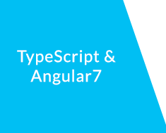 types of functions and parameters in typescript